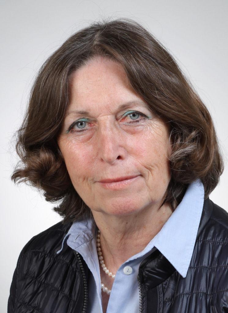 CDU fordert LKW- Abbiegeassistenten für Wolfsburg